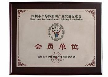 Shenzhen Semiconductor Lighting Association