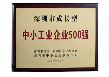 Shenzhen top 500 companies
